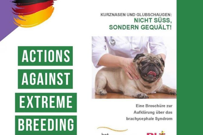 Healthy breeding in Germany