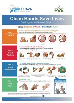 Read how clean hands can help save lives