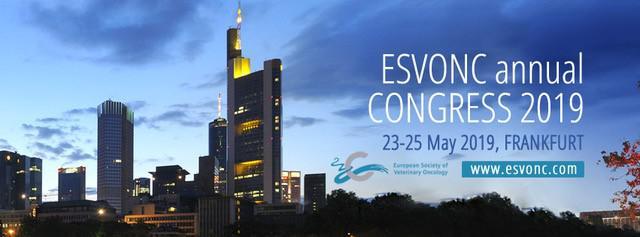 ESVONC Annual Congress 2019