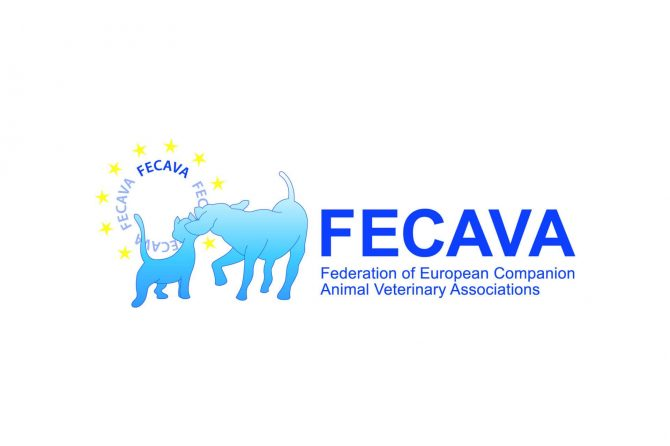 FECAVA latest news subscribe