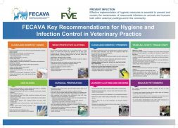 FECAVA Key Recommendations for Hygiene and Infection Control in Veterinary Practice