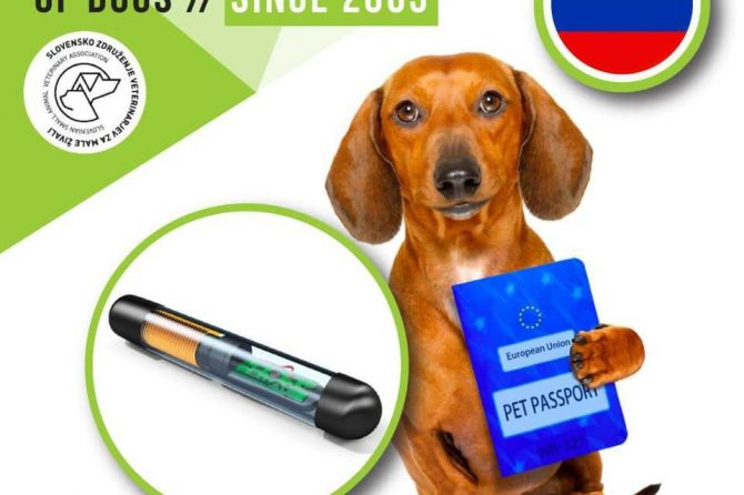 Microchipping of dogs in Slovenia