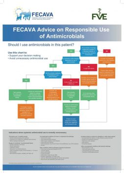 FECAVA Advice on Responsible use of Antimicrobials