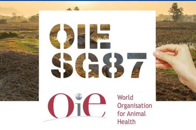 Final Report of 87th OIE General Session