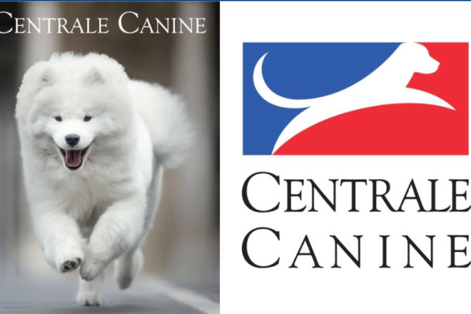 The French Kennel Club health report