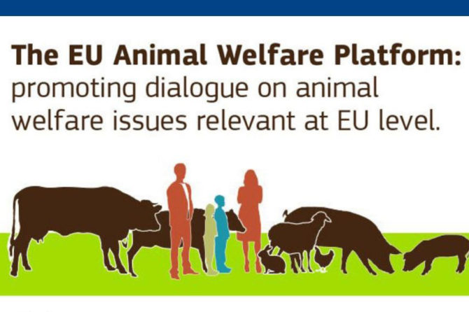 The 5th meeting of the EU Platform on Animal Welfare