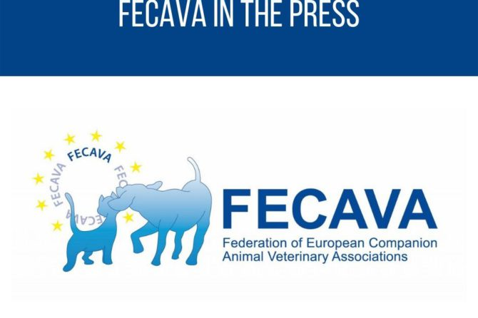 FECAVA in the press – Dog's Today on Dutch prohibition of the breeding of dogs with too short muzzles