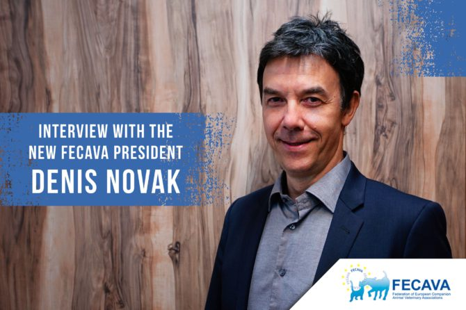 Interview With the New FECAVA President Denis Novak