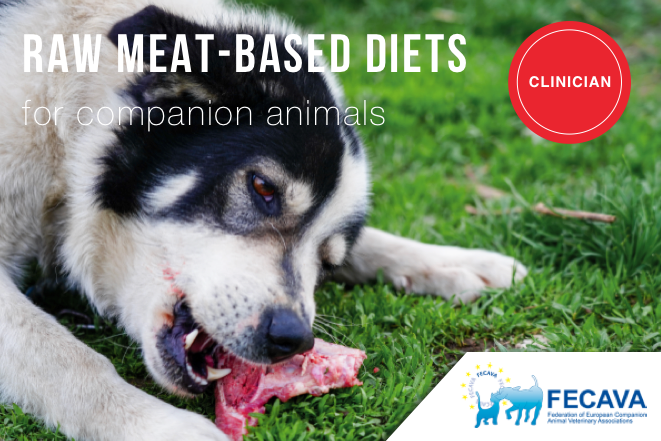 Raw meat-based diets for companion animals – a potential source of transmission of pathogenic and antimicrobial-resistant bacteria