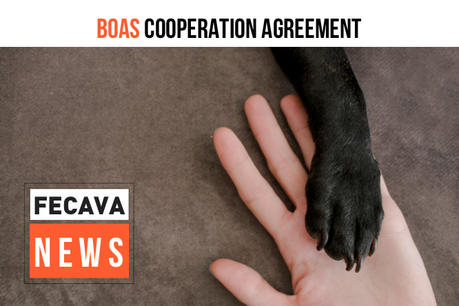 BOAS cooperation agreement between Kennel clubs and veterinarians