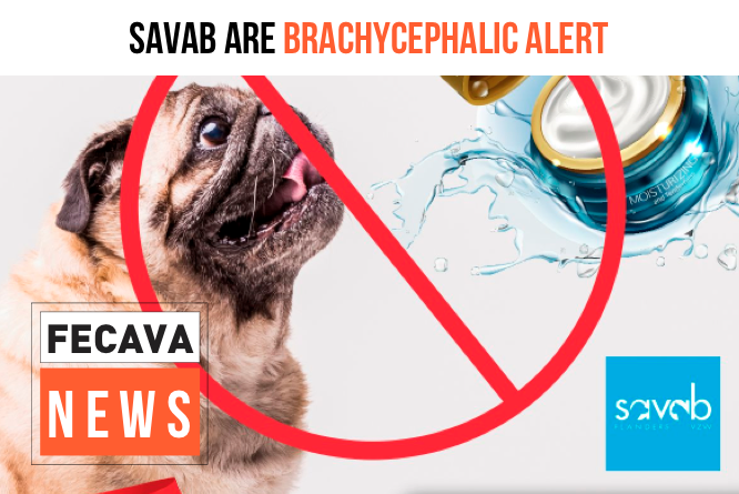 SAVAB are brachycephalic alert