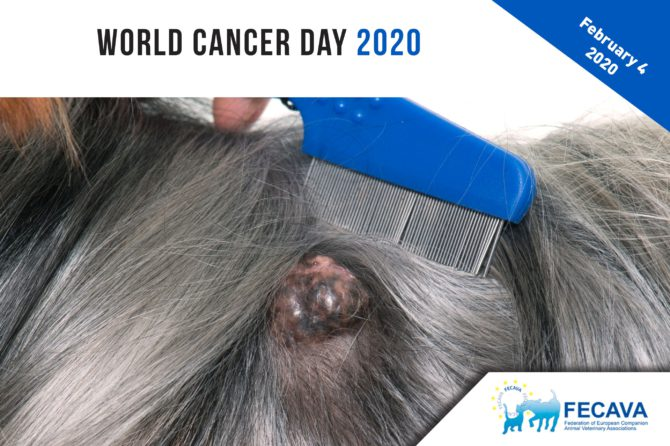World Cancer Day / 4 February 2020