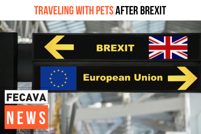 New rules for traveling with pets after Brexit