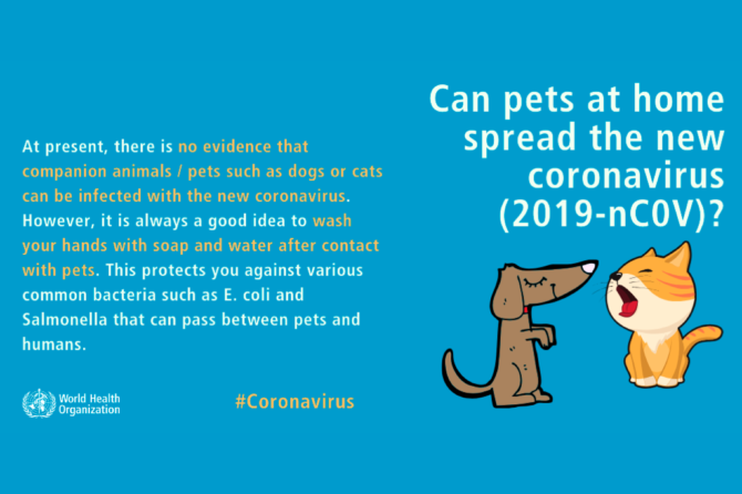 Can pets at home spread the new coronavirus (2019-nCoV)?