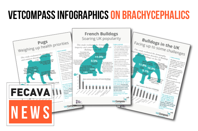 VetCompass infographics on brachycephalics