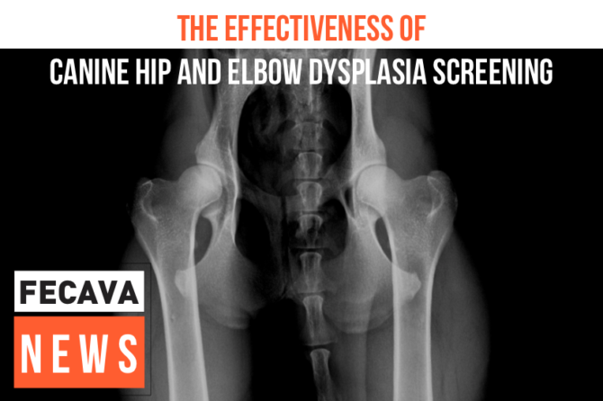 The effectiveness of Canine Hip and Elbow Dysplasia screening