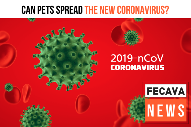 Can pets spread the new coronavirus?