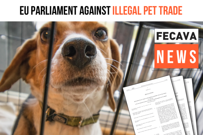 European Parliament against illegal trade of pets