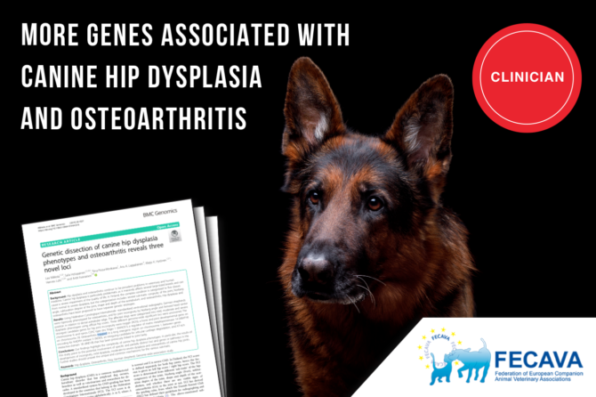 More genes associated with canine hip dysplasia and osteoarthritis