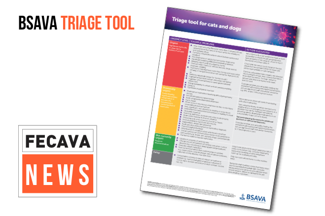 BSAVA Triage Tool