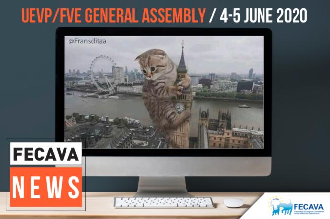 UEVP/FVE General Assembly online