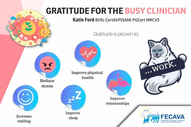 Gratitude for the Busy Clinician