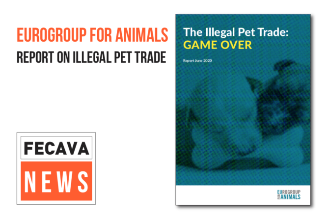 The report from the meeting The Illegal Pet Trade: Game Over