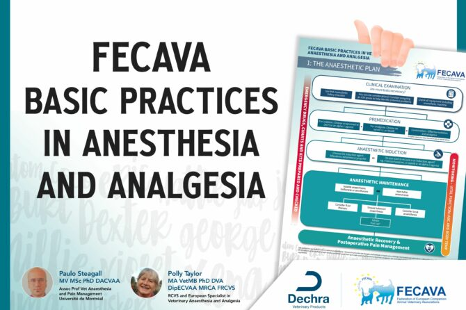FECAVA strikes to raise anesthesia and pain management standards in Europe with new campaign supported by Dechra.