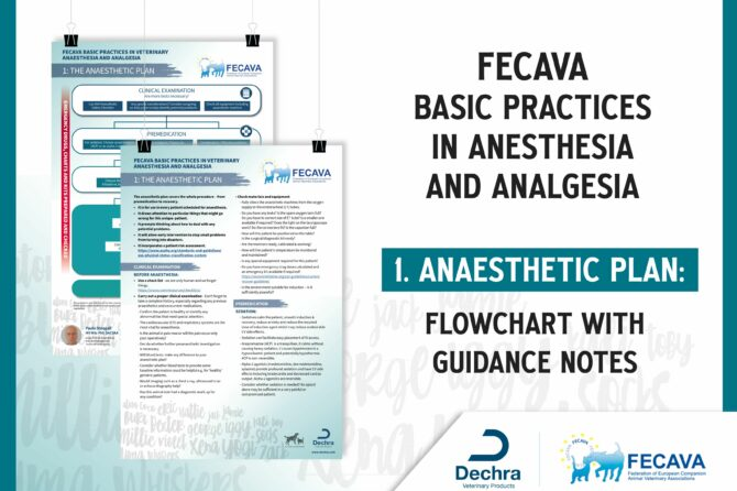 Anaesthetic Plan flowchart with Guidance notes