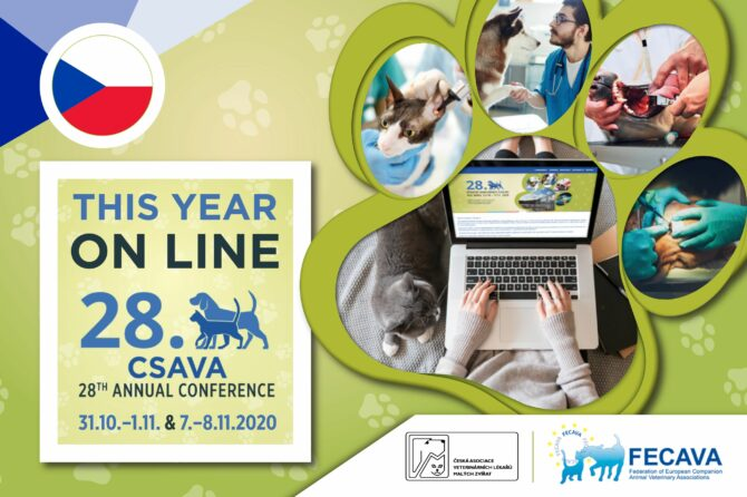 CSAVA Annual Conference goes online in 2020