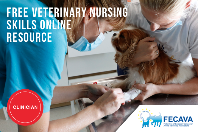 Free Resource for Veterinary Nursing Skills