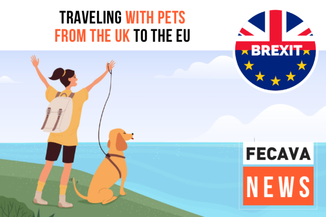 Traveling with Pets from the UK to the EU