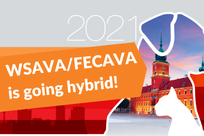 WSAVA/FECAVA Congress Goes Hybrid for 2020 to Increase Access to the Learning on Offer
