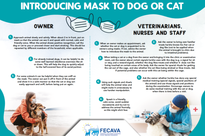 Introducing Mask to Dog or Cat