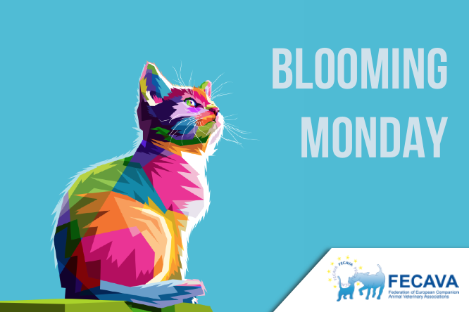 Blooming Monday