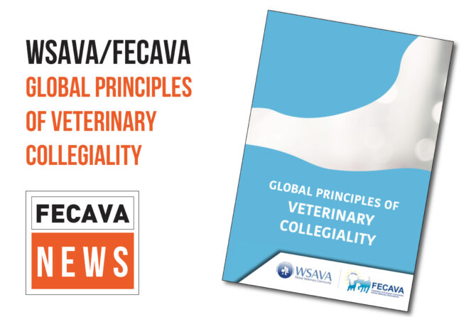 FECAVA and WSAVA Mark Blue Monday with Commitment to Veterinary Collegiality