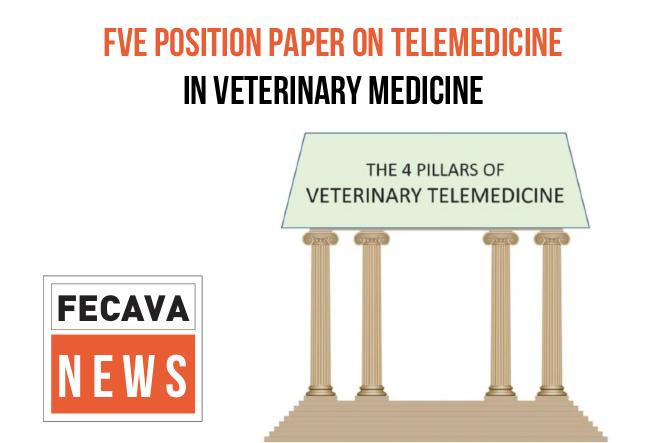 FVE Position Paper on Telemedicine in Veterinary Medicine