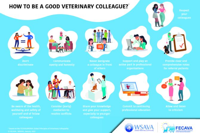 FECAVA and WSAVA Launch 'Collegiality Infographic' during Congress