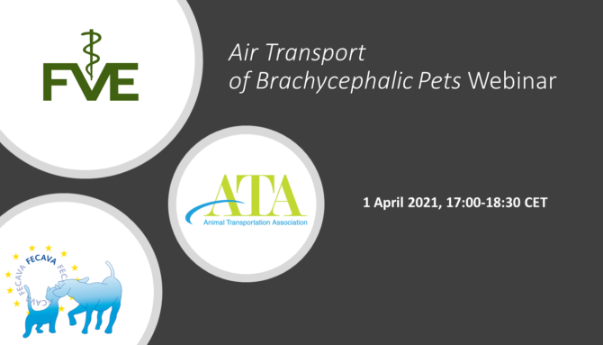 ATA/FECAVA/FVE Webinar on air transport of brachiocephalic pets 1 April 5 PM CET