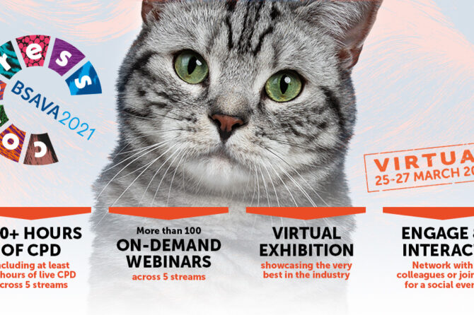 BSAVA Virtual Congress – It's not over yet! – all content available until 22 May