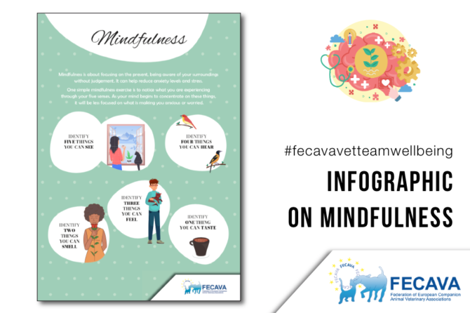 #fecavavetteamwellbeing Infographic on Mindfulness