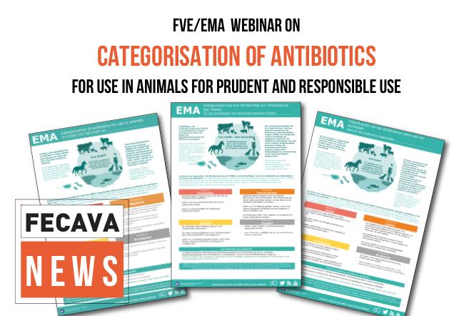 EMA/FVE Webinar on Categorization of Antibiotics for Veterinary Use