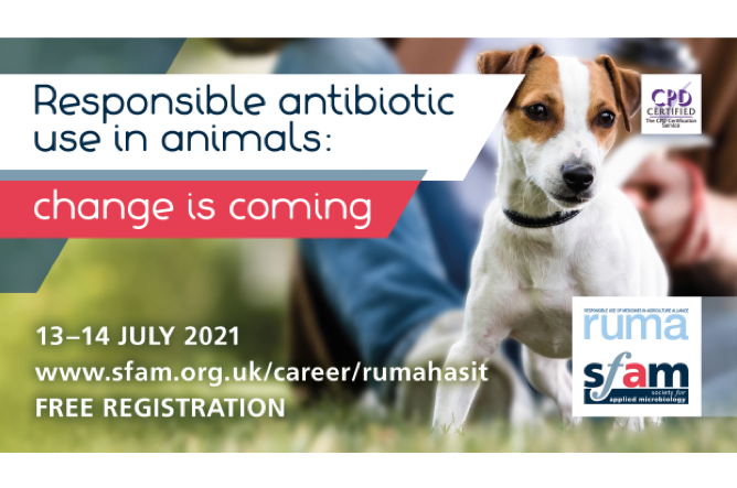 Free Webinar on Responsible antibiotic use in animals by SfAM and RUMA